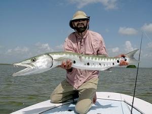 B Cuda fish